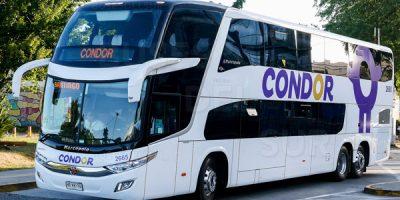 Condor Bus 1