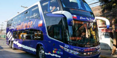 buses nuevo andimar vip